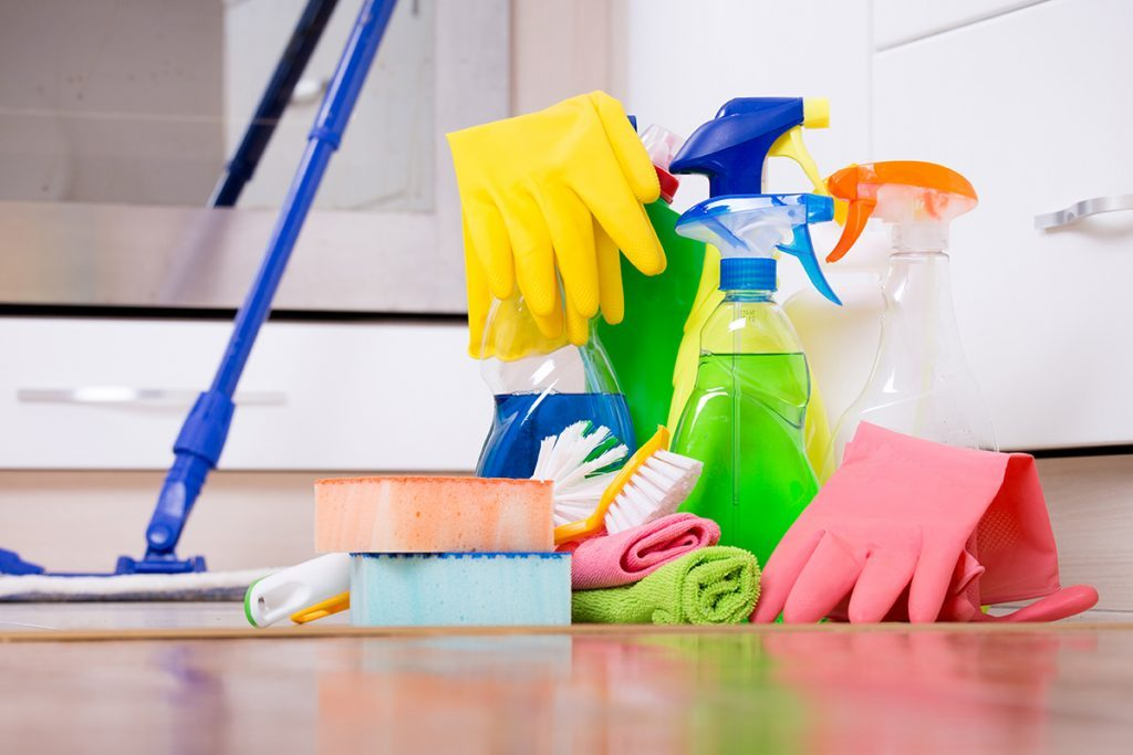 CLEANING SERVICES – Bear and Bull Technical Services